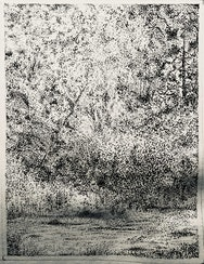 Drawing of forest