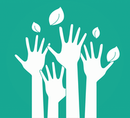 White hands and leaves on a green background