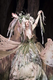 Costume for Into the Woods