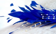 Close up of a blue feather detail on a hat