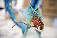 model of fish