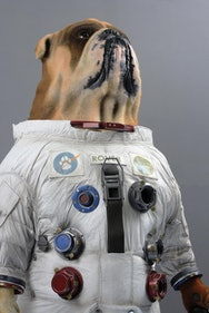 Model of dog in a space suit