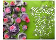 Ocean-inspired textiles with fabrics forming shapes of sea urchins and sea anenome