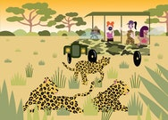 safari illustration scene